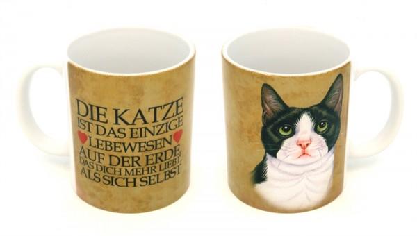 Schwarz-Weisse Katze