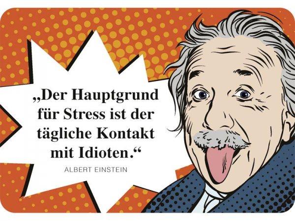 Kulthänger Blechschild Idioten Einstein KH124
