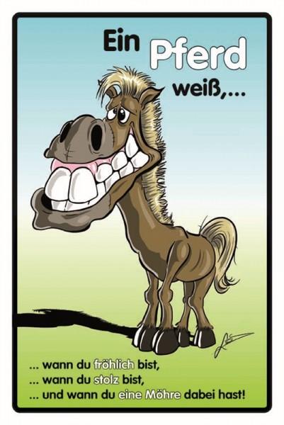 Ein Pferd weiß,...