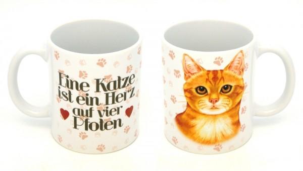 Ingwer Katze