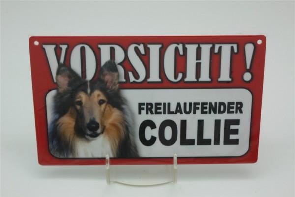 Collie