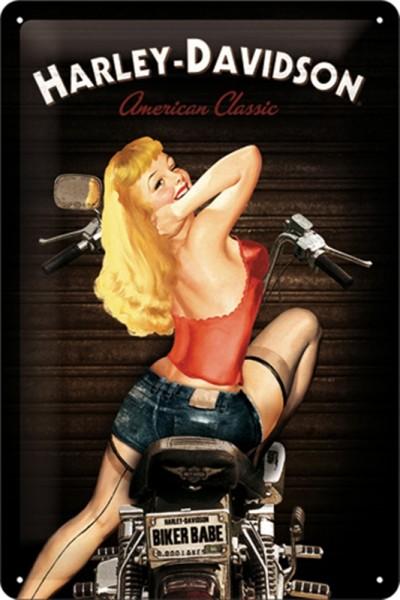 Harley Davidson Pin up