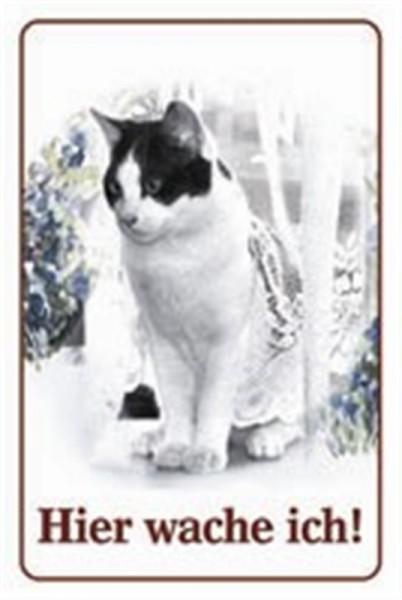 Katze schwarz-weiß Hier wache ich!