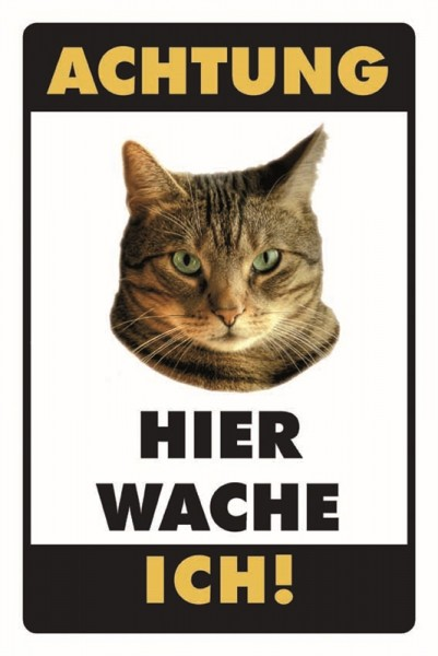 Getigerte Katze Achtung Hier wache ich!