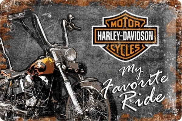 Harley Davidson My favorite Ride