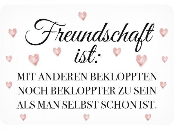 Kulthänger Blechschild Freundschaft KH133