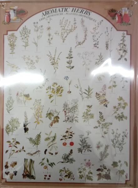 Blechschild Herbs Kräuter