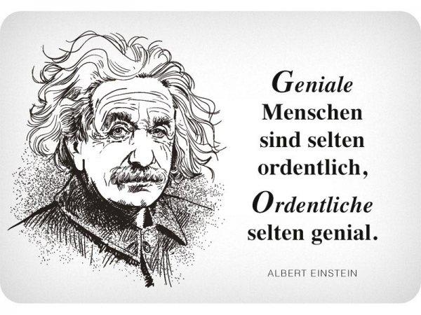 Kulthänger Blechschild Geniale Einstein KH123