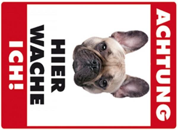 Hier wache ich! Französische Bulldogge