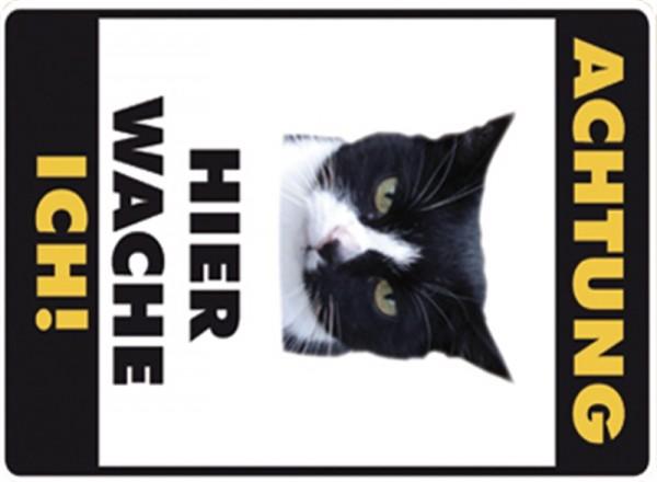 Hier wache ich! Schwarz-Weisse Katze